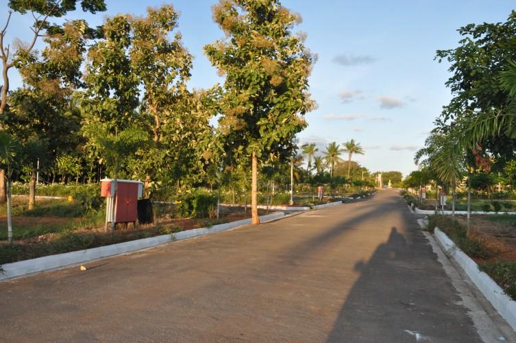 Aashirithaa Brindavan